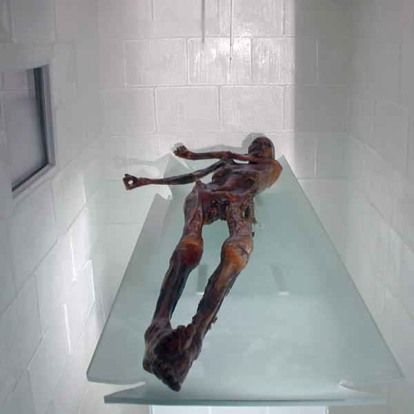Untersuchungen an Ötzi
