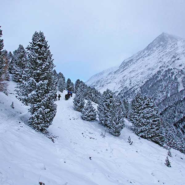 Auf dem Weg Richtung Feldkögele - Schneeschuhwandern Vent
