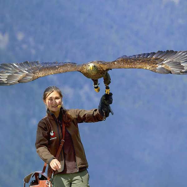 Falknerin Katharina mit Adler - Greifvogelpark