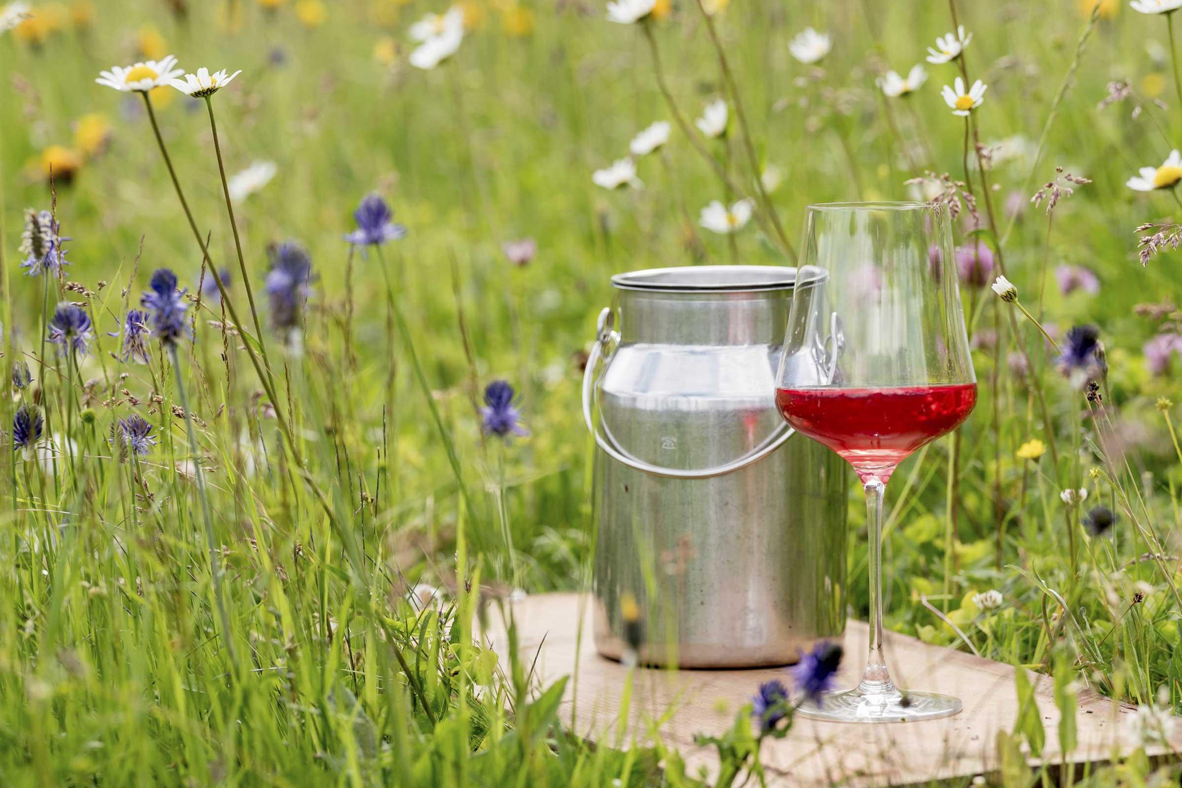 Weinglas in Wiese - Haiminger Markttage