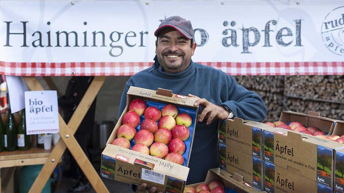 Obstbauer präsentiert stolz Ernte - Haiminger Markttage