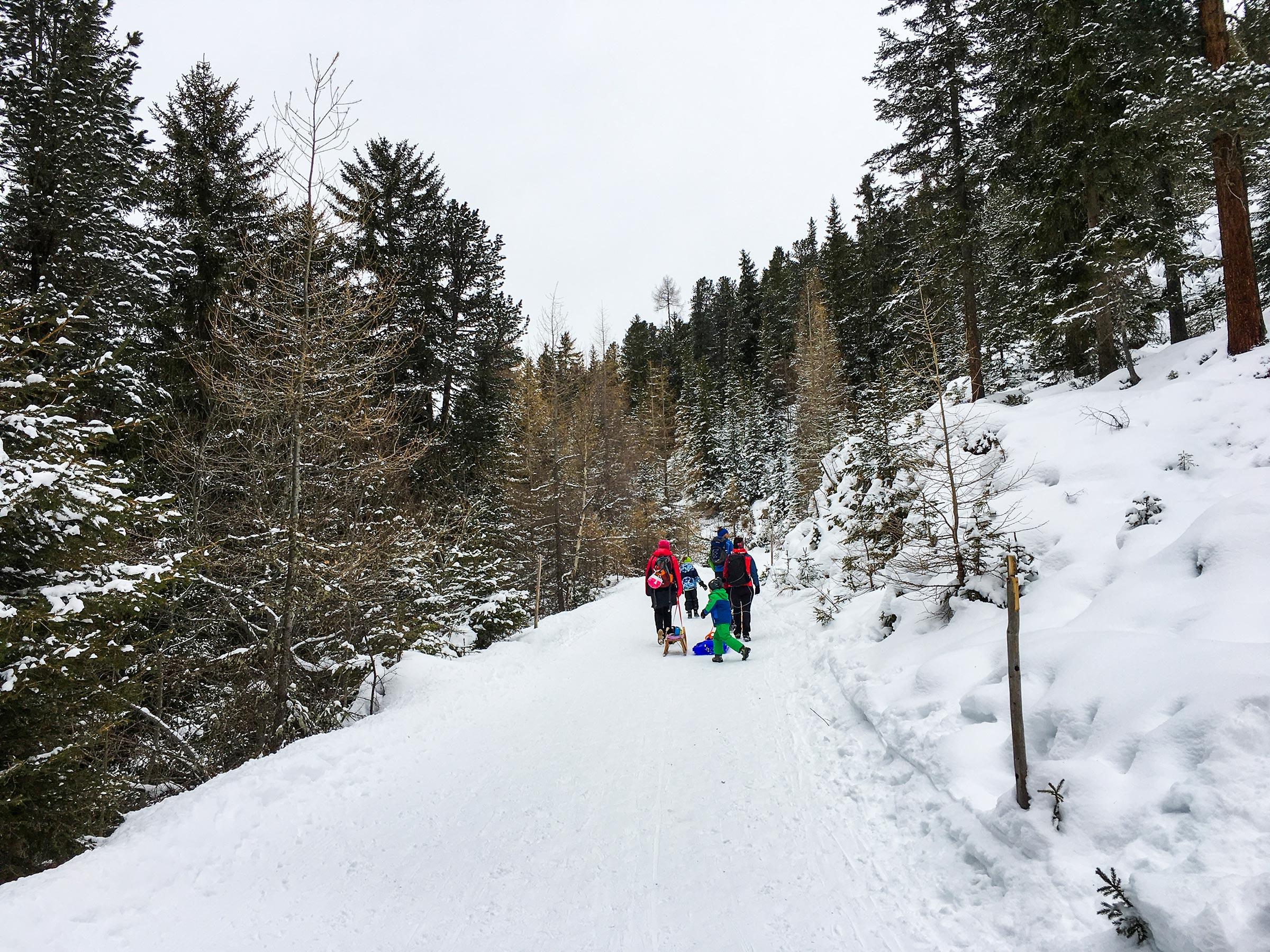 Auf dem Weg zur Feldringalm - Rodeln Ötztal