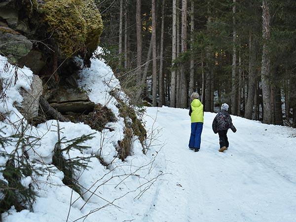 Rodelbahn Wurzbergalm Ötztal