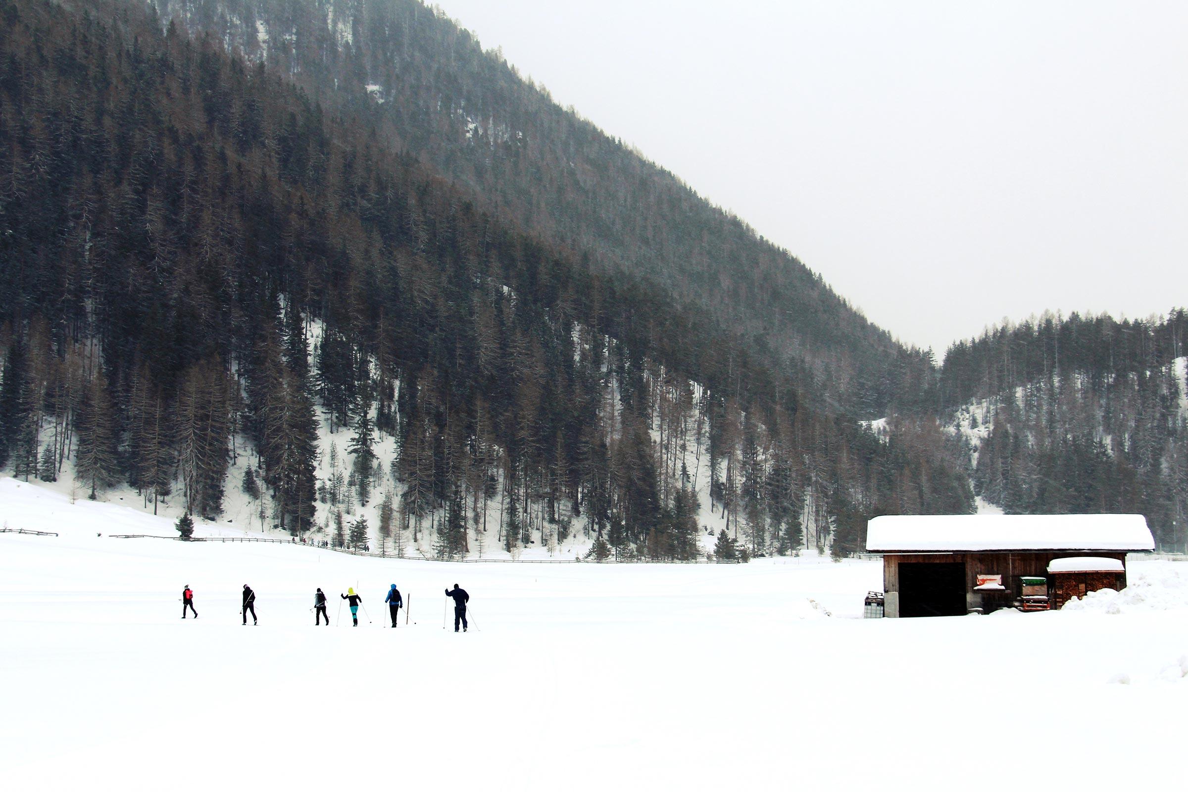 Langlaufen auf stiller Loipe in Niederthai - Niederthai Card