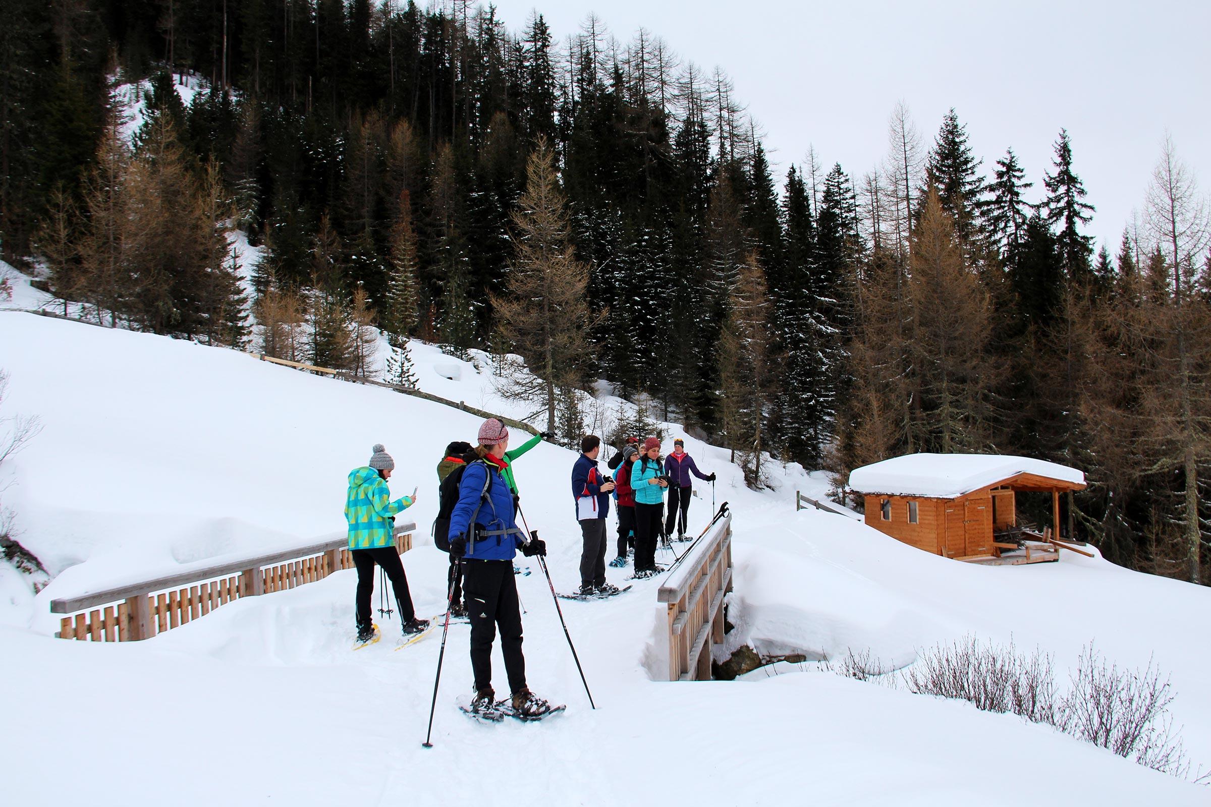 Schneeschuhwandern in Niederthai - Niederthai Card