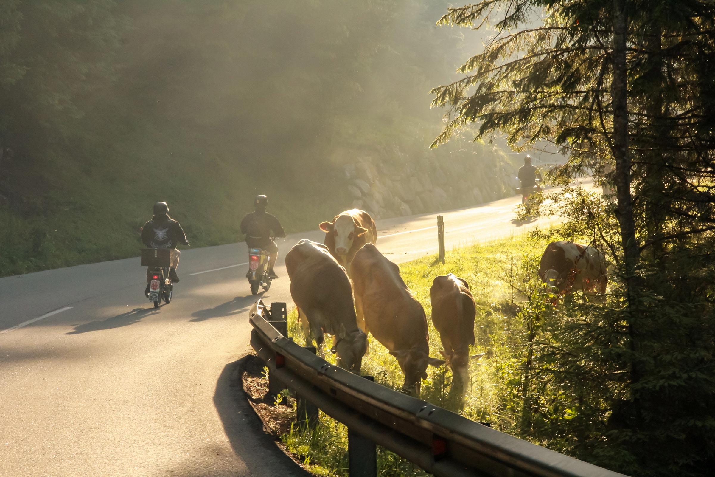 Ötztaler Mopedmarathon - Ötztaler Mountainbike Festival