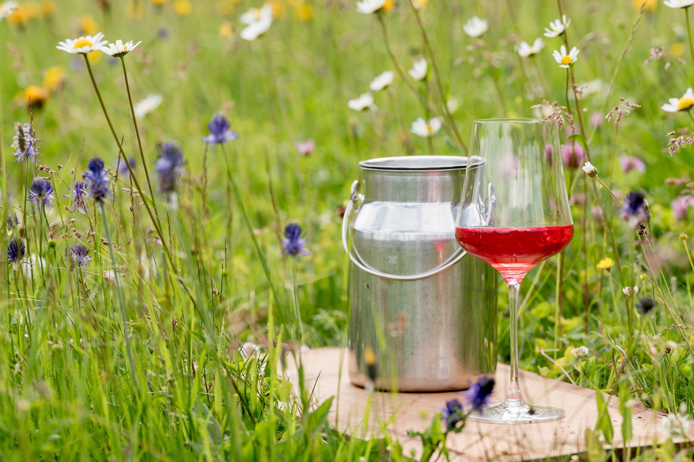 Wein in Wiese - Ötztaler Mountainbike Festival