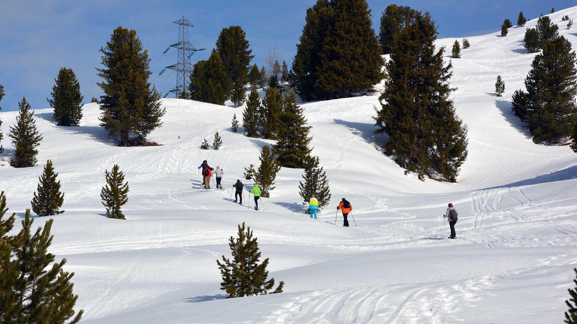 Auf die sanfte Tour: Schneeschuhwanderung zum Faltergartenköpfl