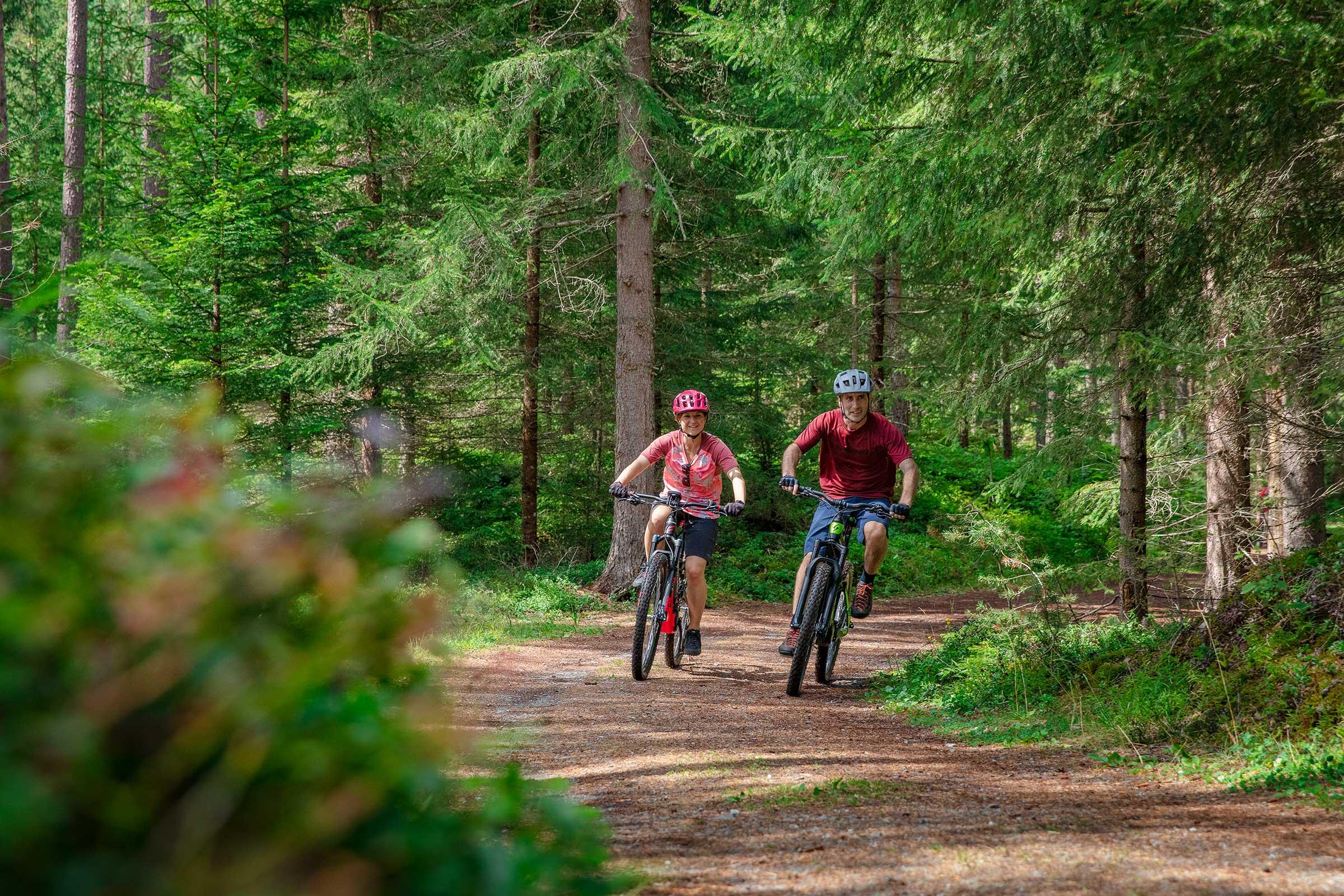 Unterwegs im Wald am Ötztal Radweg - Ötztal Radweg