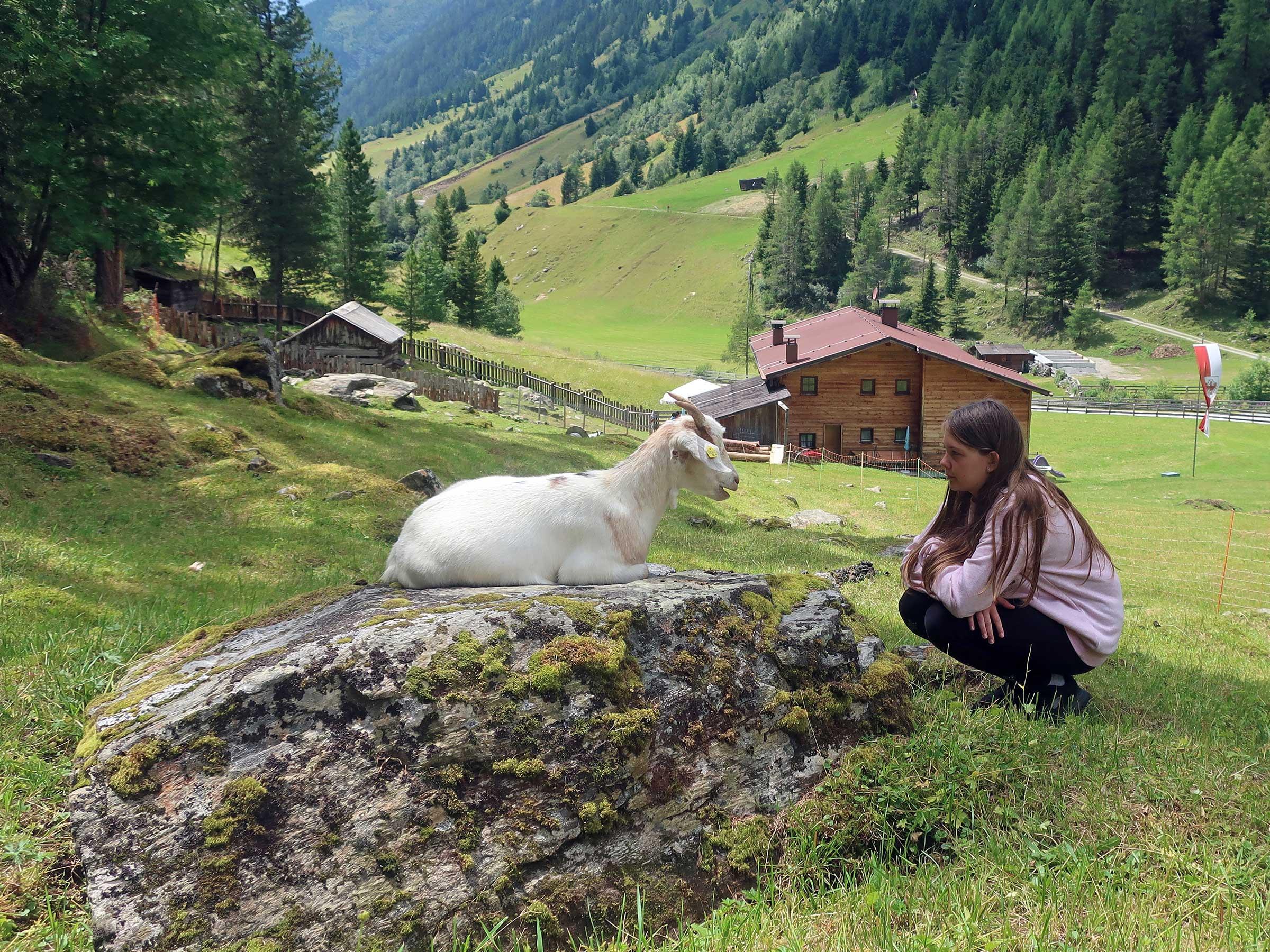 Zwergziege und Kind - Reiten, Kutschenfahrten und Streichelzoos Ötztal