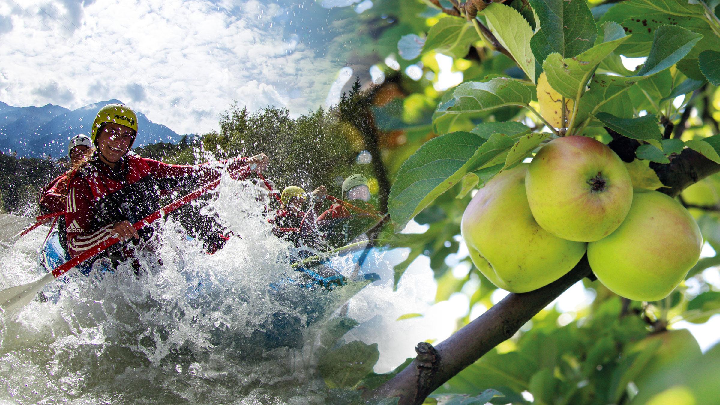 Knackig-frisch: AREA 47 und Obstlager Haiming finden gemeinsamen Nenner