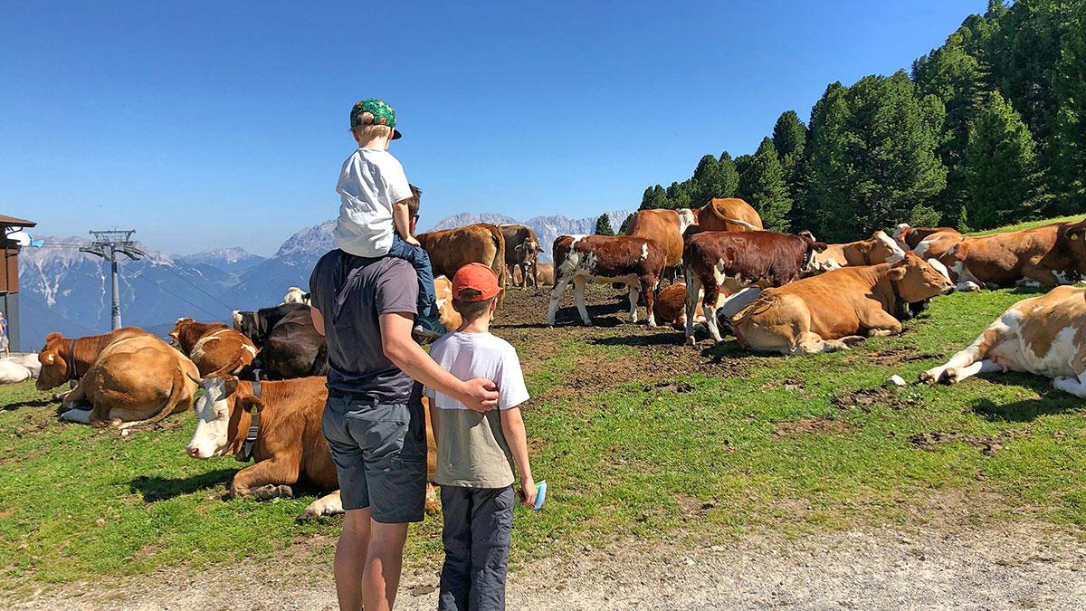 Familie vor Kuhherde - Familienurlaub Ötztal Tirol